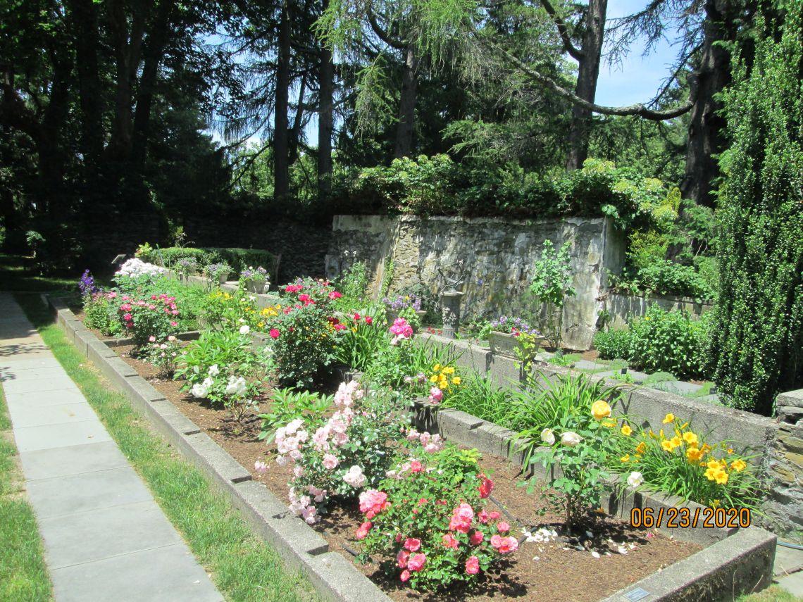 Arboretum Rose Garden