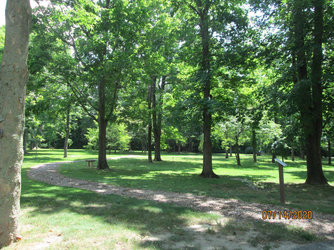 Arboretum Woodlands